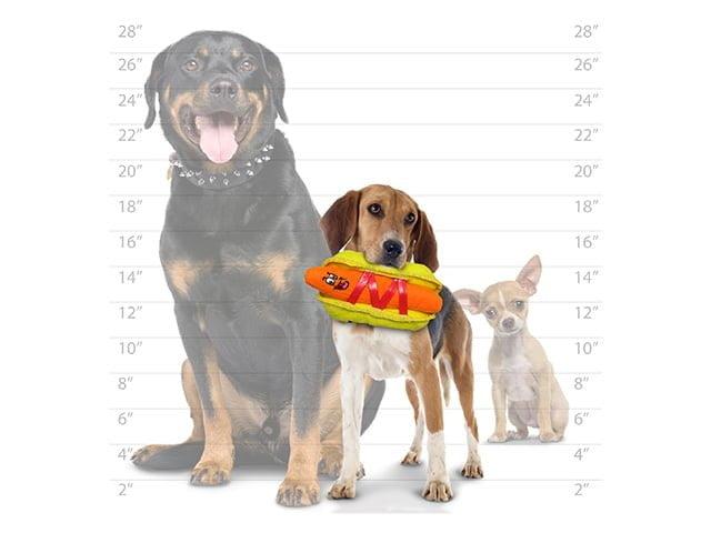 Tuffy Funny HotDog, 21cm