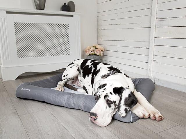 Scruffs Cool seng, grå