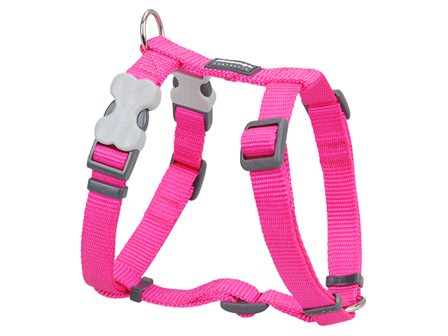 Red Dingo harness, classic hot pink