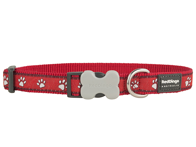 Red Dingo collar, red paws
