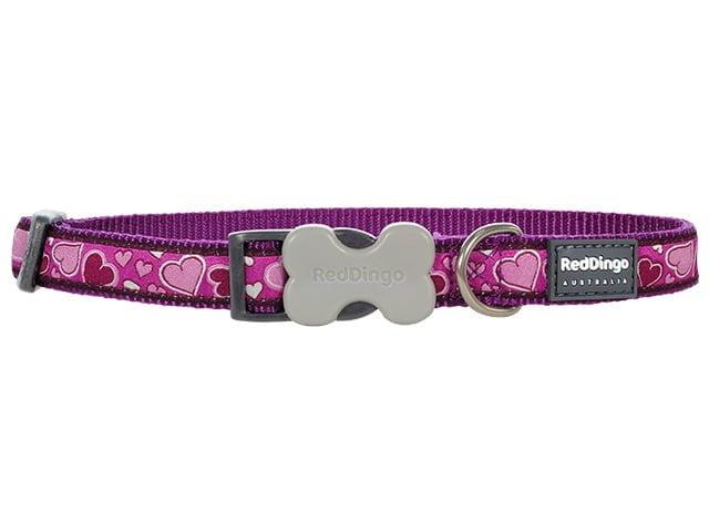 Red Dingo necklace, b-love purple