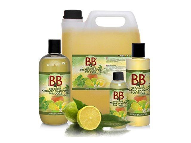 B&B økologisk shampoo med citrus