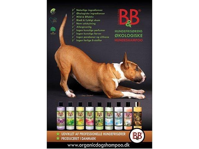 B&B Plakat, shampoo, stor