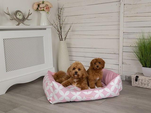 Scruffs Florence seng, pink